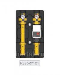 Насосная группа R586RY101